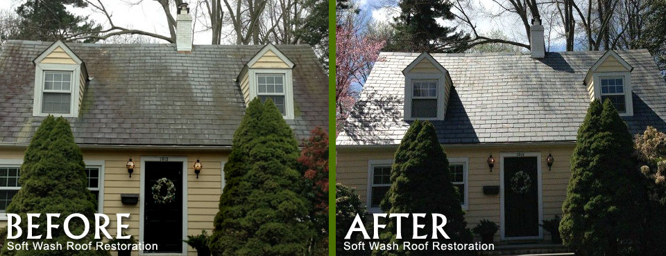 Before and After Soft Wash Roof Cleaning & Residential Roof Cleaning Services memphite.com
